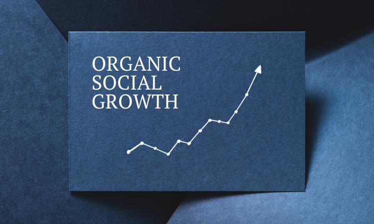 Organic Social Media Growth
